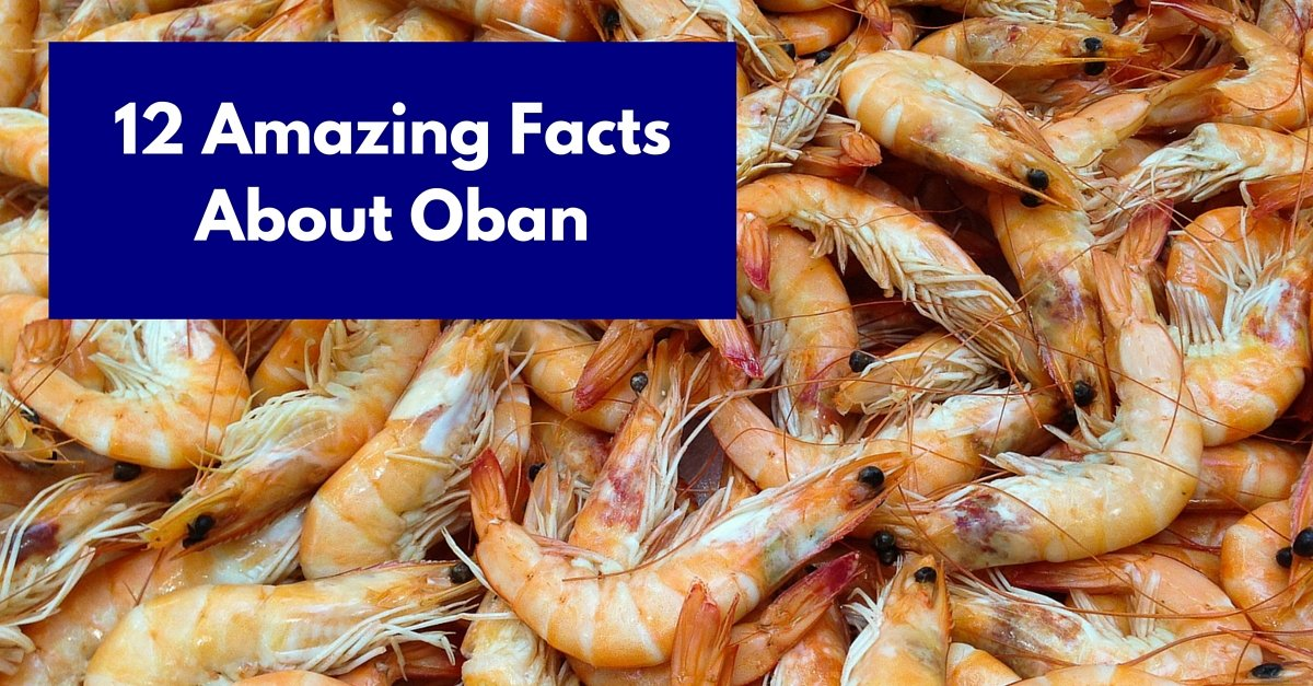 12 Amazing Facts About Oban